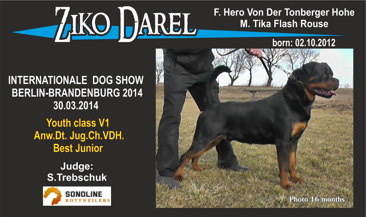 Ziko Dog Show Germany